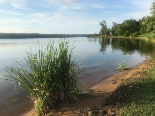 Guntersville view