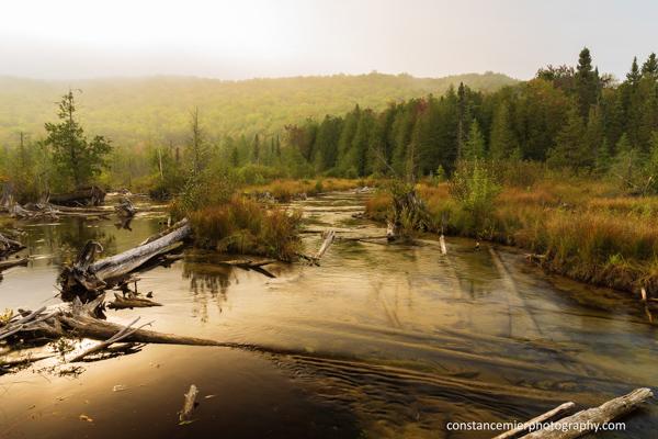 Wild River 2